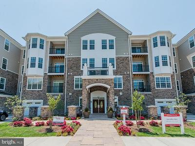 Single Family Home For Sale: 605 Quarry View Court #403