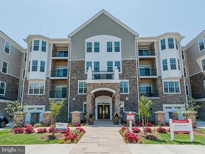 Single Family Home For Sale: 605 Quarry View Court #404