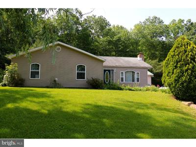 Single Family Home For Sale: 9754 Route 209