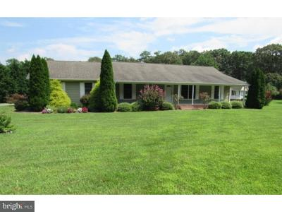 Georgetown Single Family Home For Sale: 22939 Peterkins Road