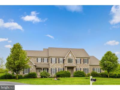 Downingtown Single Family Home For Sale: 1539 Elk Run Road