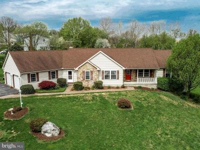 Kirkwood Single Family Home For Sale: 357 Sproul Road