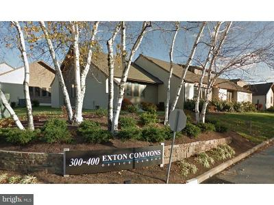 Exton Condo For Sale: 431 Exton Cmns #31
