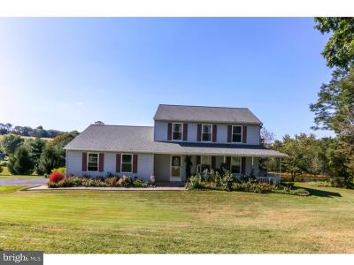 Oxford Single Family Home For Sale: 260 Wilson Mill Road
