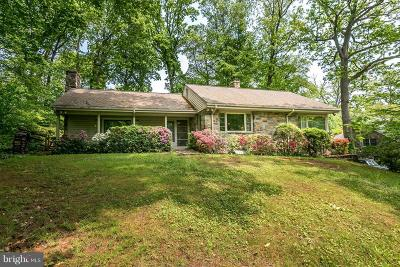 Baltimore Single Family Home For Sale: 616 Valley Lane