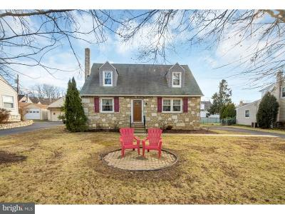 Huntingdon Valley Single Family Home For Sale: 3201 Philmont Avenue