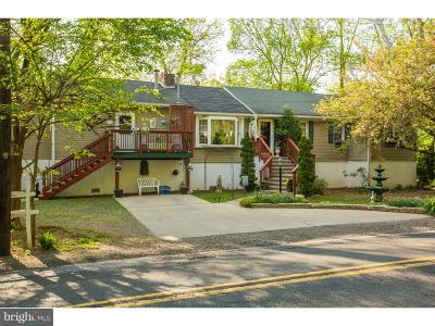Bucks County Single Family Home For Sale: 4701 Newportville Road