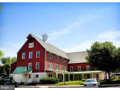Doylestown Commercial For Sale: 500 East Road #204