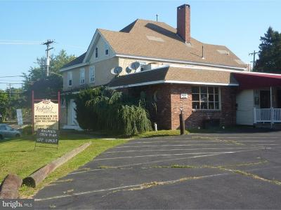 Bucks County Commercial For Sale: 2295 2nd Street Pike