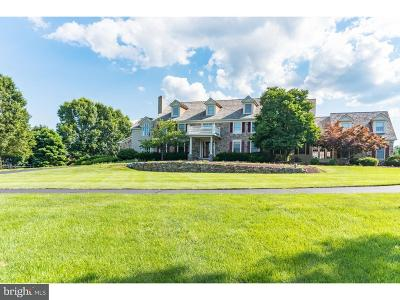 Bucks County Single Family Home For Sale: 858 Tower View Circle