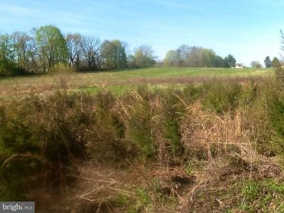 Bucks County Residential Lots & Land For Sale: 89 Pine Lane