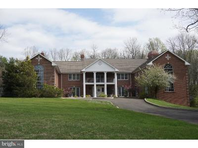 Bucks County Single Family Home For Sale: 1390 Old Jacksonville Road