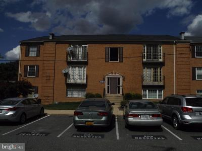 Suitland Single Family Home For Sale: 3801 Swann Road #304