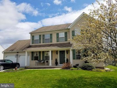 Dover Single Family Home For Sale: 3710 Wheatland Drive