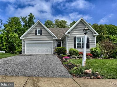 York Haven Single Family Home For Sale: 105 Lark Drive