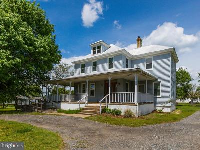 Mechanicsville Single Family Home For Sale: 28040 Old Village Road
