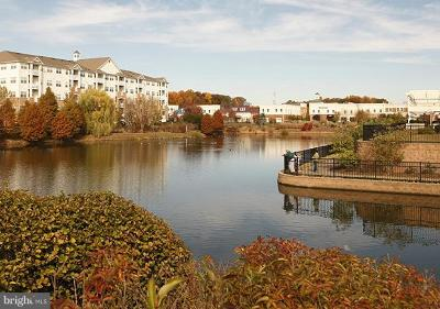 Gambrills Townhouse For Sale: 2604 Chapel Lake Drive #314