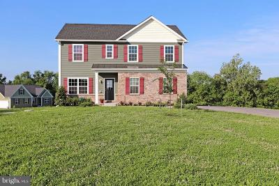 Hagerstown Single Family Home For Sale: 711 Beaver Creek Road