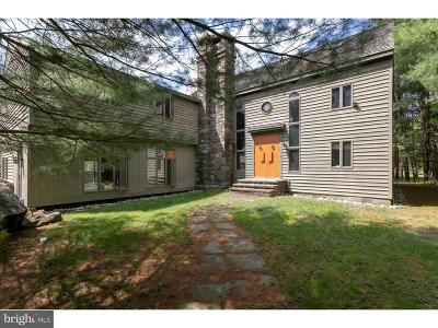Bucks County Single Family Home For Sale: 843 River Road