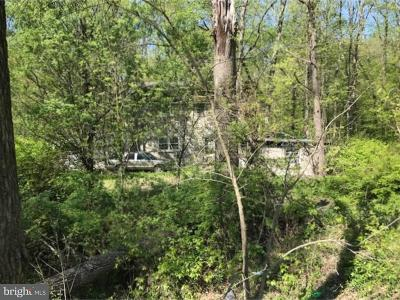 Bucks County Commercial For Sale: 2114 Route 313