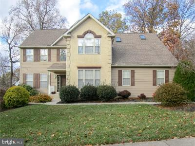 Newark Single Family Home Under Contract: 29 Ohio State Drive