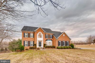 Single Family Home For Sale: 2518 Chestnut Woods Court
