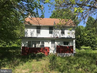 Chestertown Single Family Home For Sale: 8820 Georgetown Road