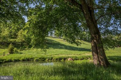Rappahannock County Residential Lots & Land For Sale: Crest Hill Road