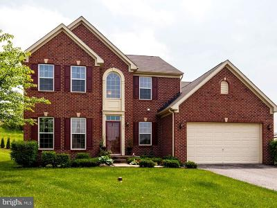Single Family Home For Sale: 717 Lower Field Circle