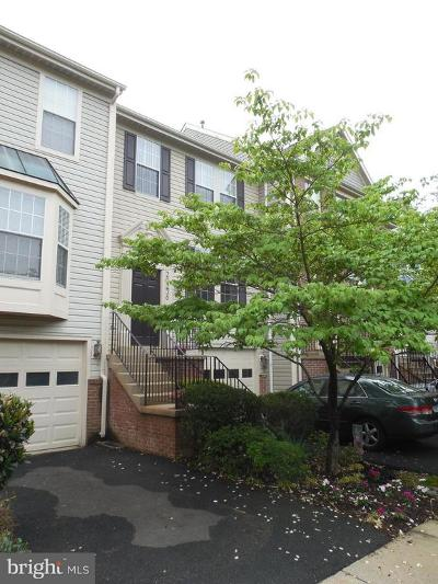 Montgomery County Townhouse For Sale: 20236 Waters Row Terrace