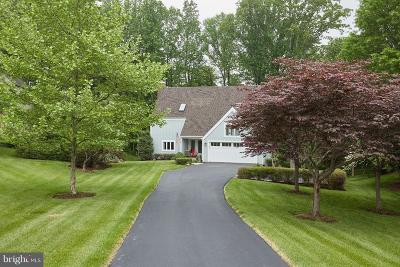 Great Falls Single Family Home For Sale: 9100 White Chimney Lane