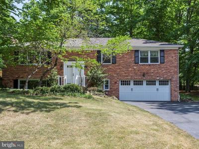 Lorton Single Family Home For Sale: 10719 Anita Drive
