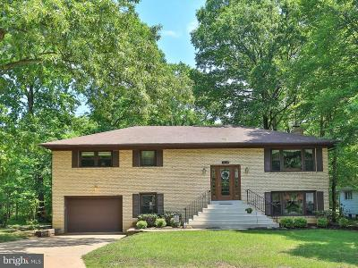 Dumfries Single Family Home For Sale: 15803 Vista Drive