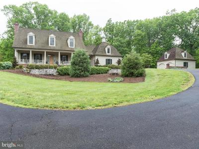 Centreville Single Family Home For Sale: 5380 Chandley Farm Circle