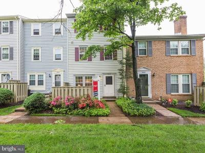Silver Spring Townhouse For Sale: 3002 Piano Lane #42