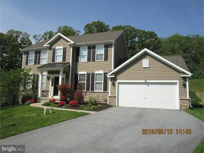 Downingtown Single Family Home For Sale: 3117 Silbury Hill