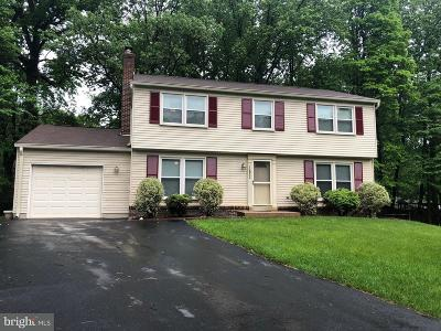 Herndon Single Family Home For Sale: 12802 Briery River Terrace