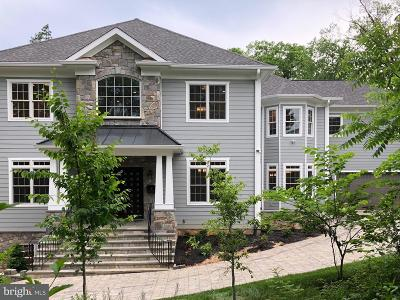 McLean Single Family Home For Sale: 6530 Mulroy Street