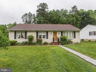 Easton Single Family Home For Sale: 29266 Pin Oak Way