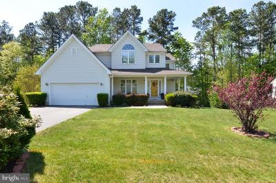 Single Family Home For Sale: 9906 Ashmeade Court