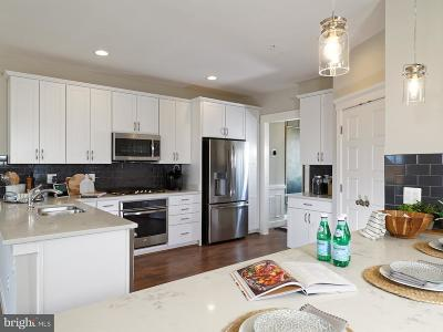 Silver Spring Townhouse For Sale: Clara Downey Ave