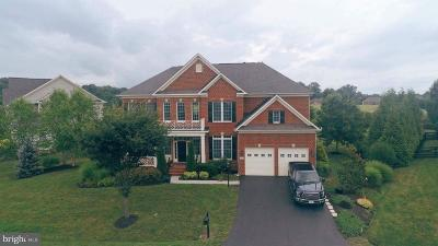 Loudoun County Single Family Home For Sale: 19438 Valleybrook Lane W