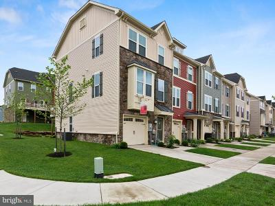 Glen Burnie Townhouse For Sale: 729 Apple Orchard Drive