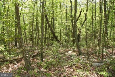 Frederick County Residential Lots & Land For Sale: 517 Puma Trail