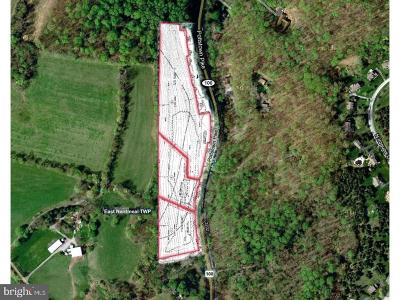 Glenmoore Residential Lots & Land For Sale: L 1, 2, 3 Pottstown Pike