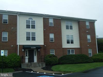Fauquier County Condo For Sale: 11235 Torrie Way #L
