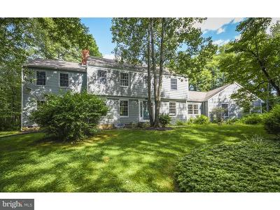 Hopewell Single Family Home For Sale: 82 New Road