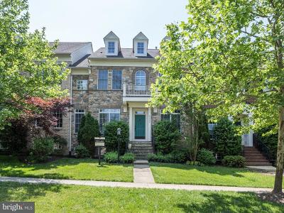 Loudoun County Townhouse For Sale: 43496 Millwright Terrace