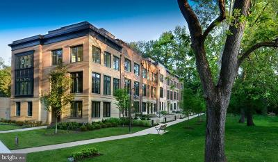 Chevy Chase Townhouse For Sale: 3645 Chevy Chase Lake Drive #LELAND M