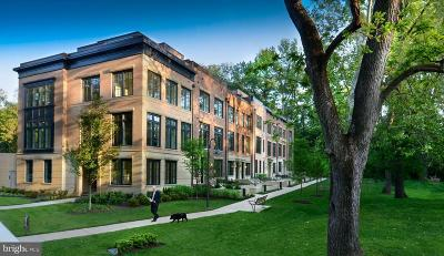 Chevy Chase Townhouse For Sale: 3645 Chevy Chase Lake Drive #STANFORD